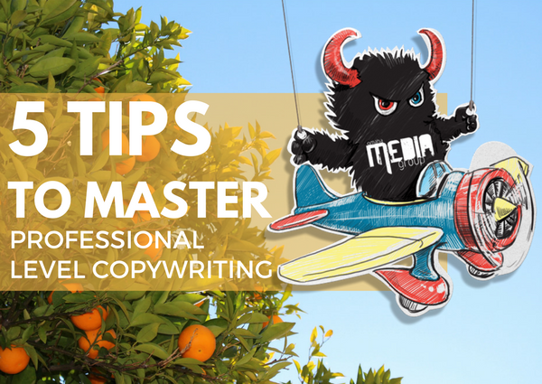 5 Copywriting Tips That Will Help You to Master Professional Level Content