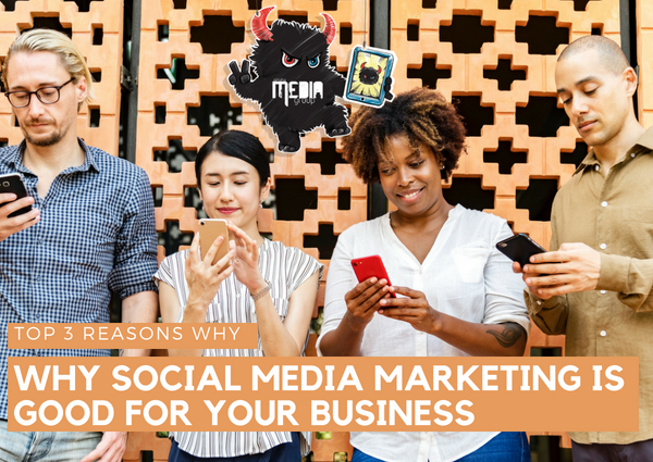 You need social media marketing for your business