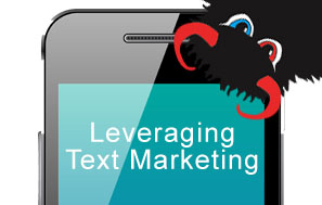 Leveraging Text Marketing