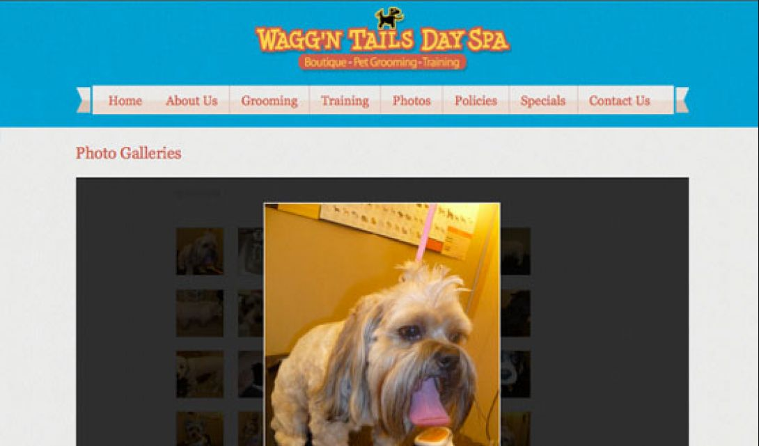 Wagg'n Tails Day Spa - 6